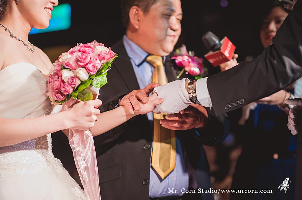 倍豪&艾薇 結婚_0882