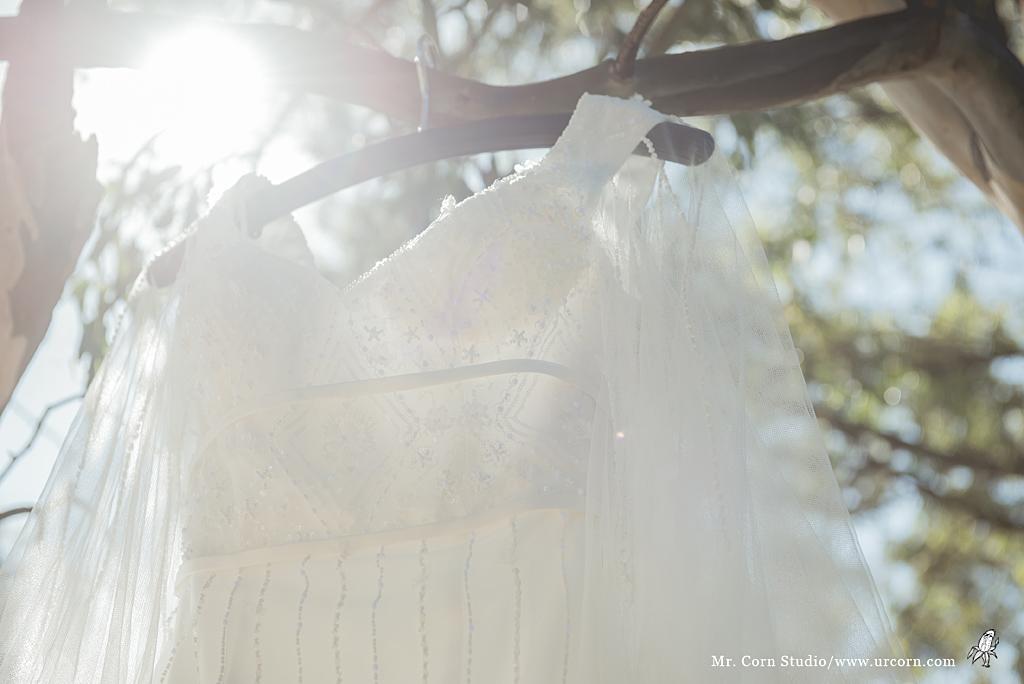 南非婚禮_0512