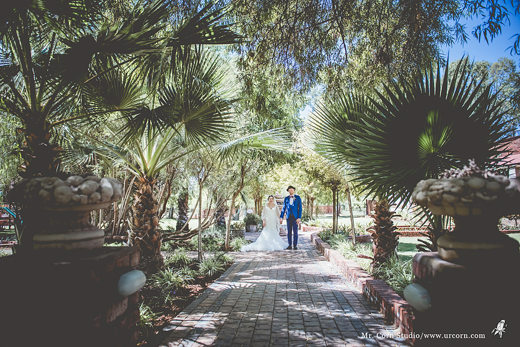 南非婚禮_1263