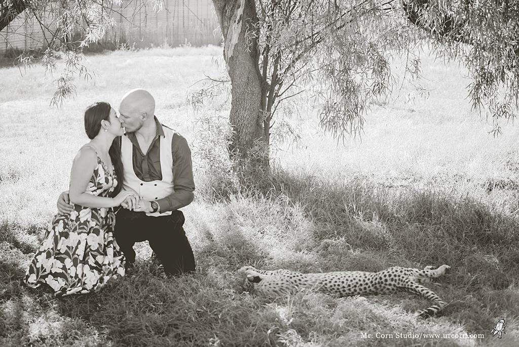南非婚禮_1431
