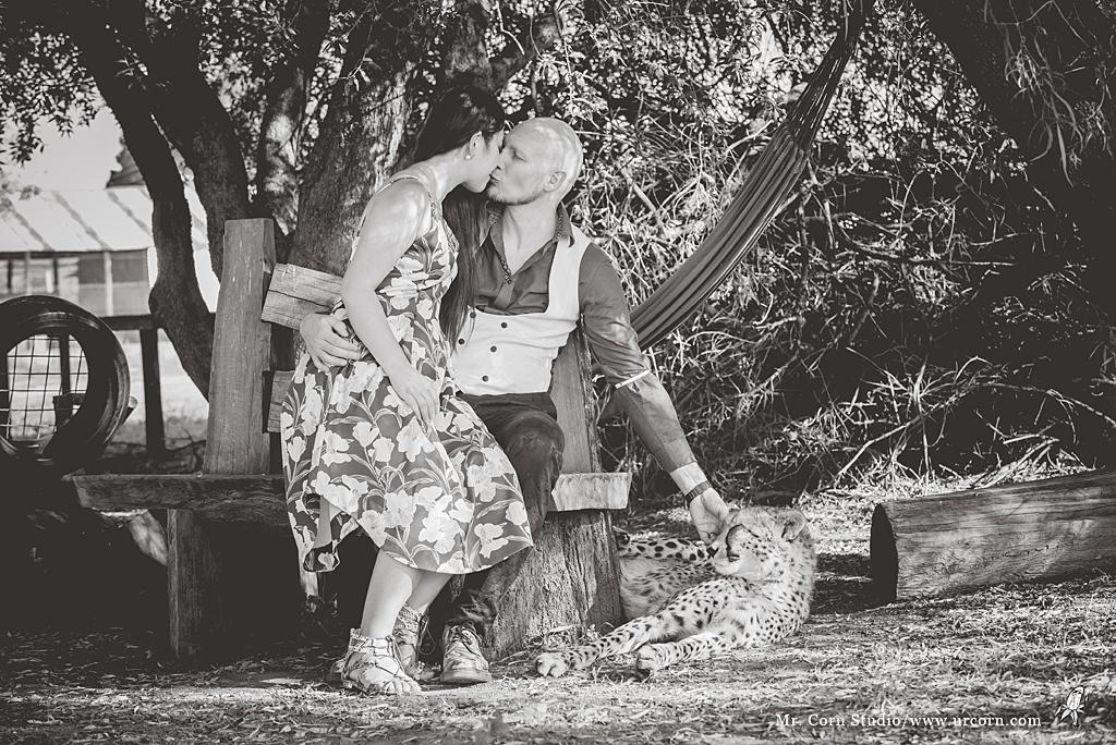 南非婚禮_1510